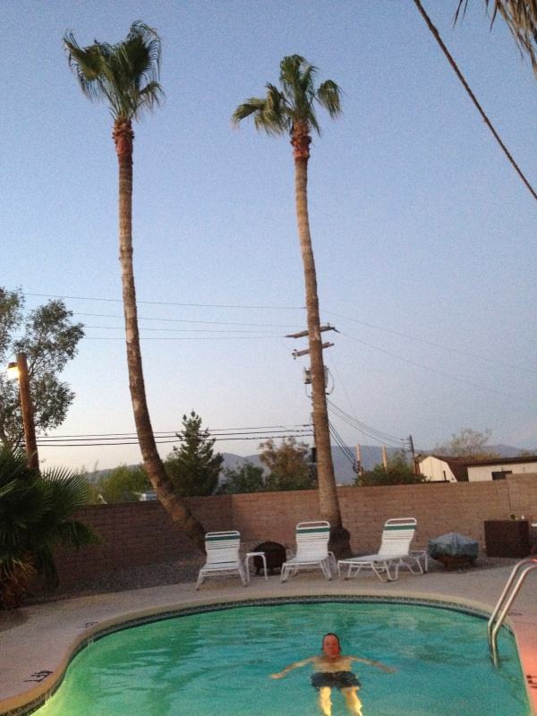 Pool, AND palms!